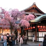 In front of the theater in Gion, principal geisha district of Kyōto, after a performance of Miyako Odori